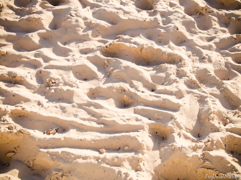 sandy beach of Glenelg Beach in South Australia