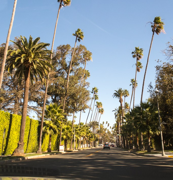 Los Angeles themed Instagram Accounts you have to follow