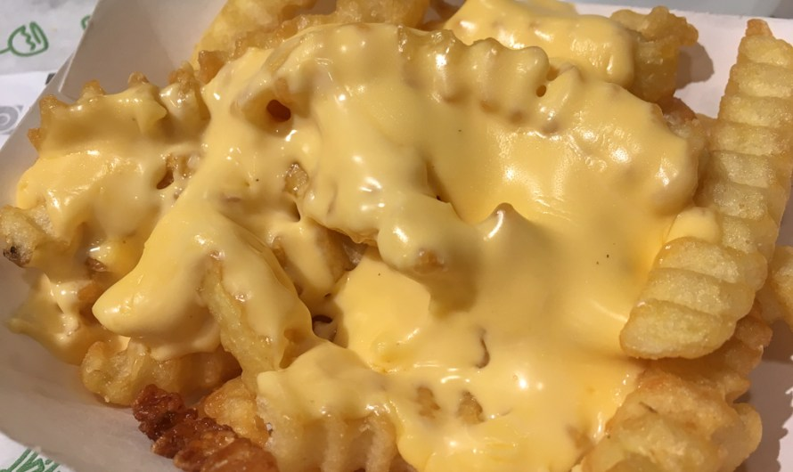 The best Fries in the World – Shake Shack Cheese Fries