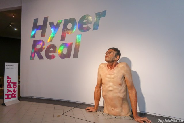 Zharko BASHESKI Ordinary man 2009-10 HYPER REAL National Gallery of Australia Canberra
