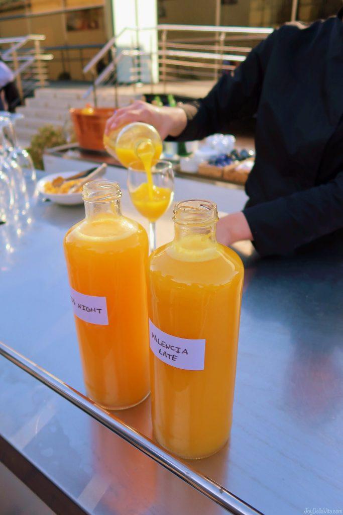 Orange Juice Tasting in BURRIANA near Valencia