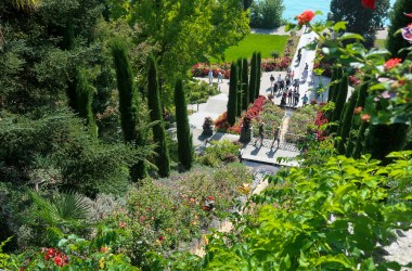 Mainau Island Flower Waterfall