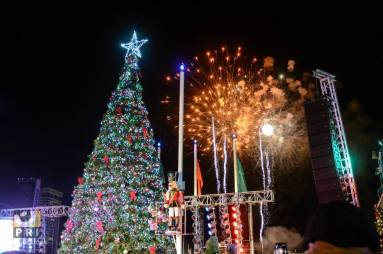 Joy-Dennis-Christmas-on-the-River-PRI-Productions-2014 (9)
