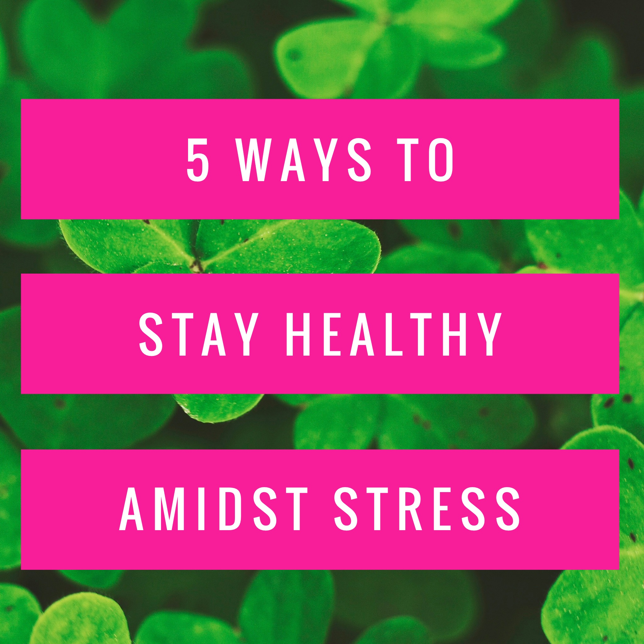 Stay healthy amidst stress-iModelAfrica
