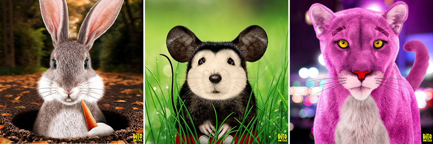 What Would Animal Cartoon Characters Look Like in Real Life?