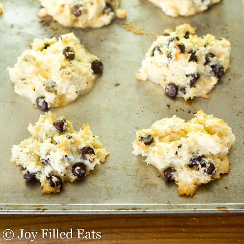 Chocolate Chip Coconut Macaroons - Low Carb, Dairy/Sugar/Grain Free, THM S