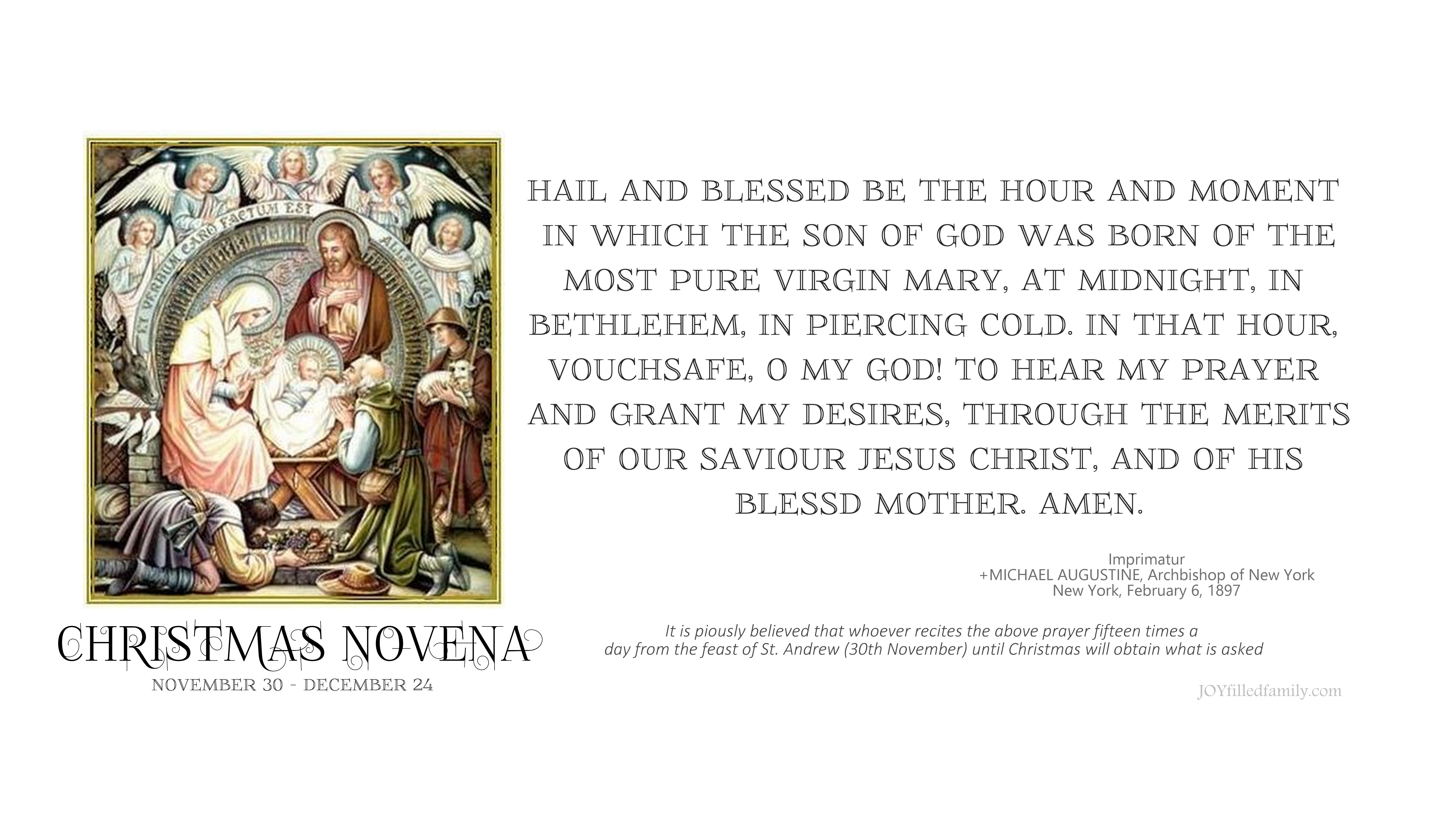 image relating to St Andrew Novena Printable identified as Xmas Novena Reminders