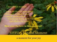 joyfuel_loveinthismoment3