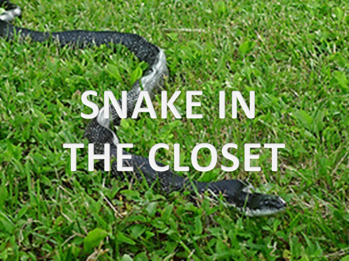 Snake in the closet