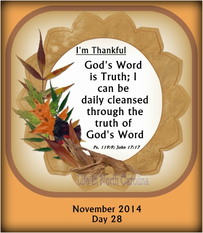 God's Word is Truth; I can be cleansed daily through the truth of God's Word.
