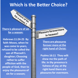 Which is better choice