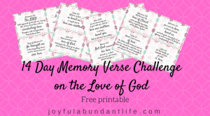 14 Day Memory Verse Challenge on the Love of God