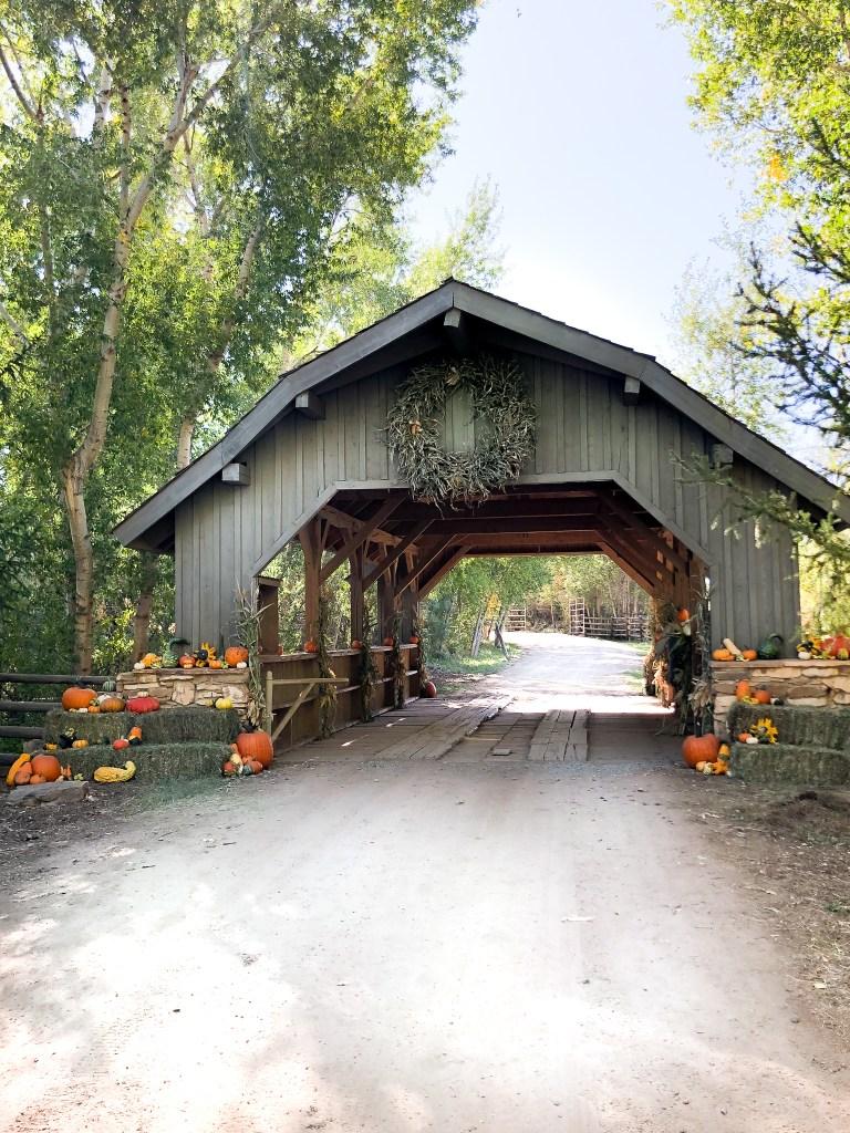 The bridge at the Covered Bridge Pumpkin Patch