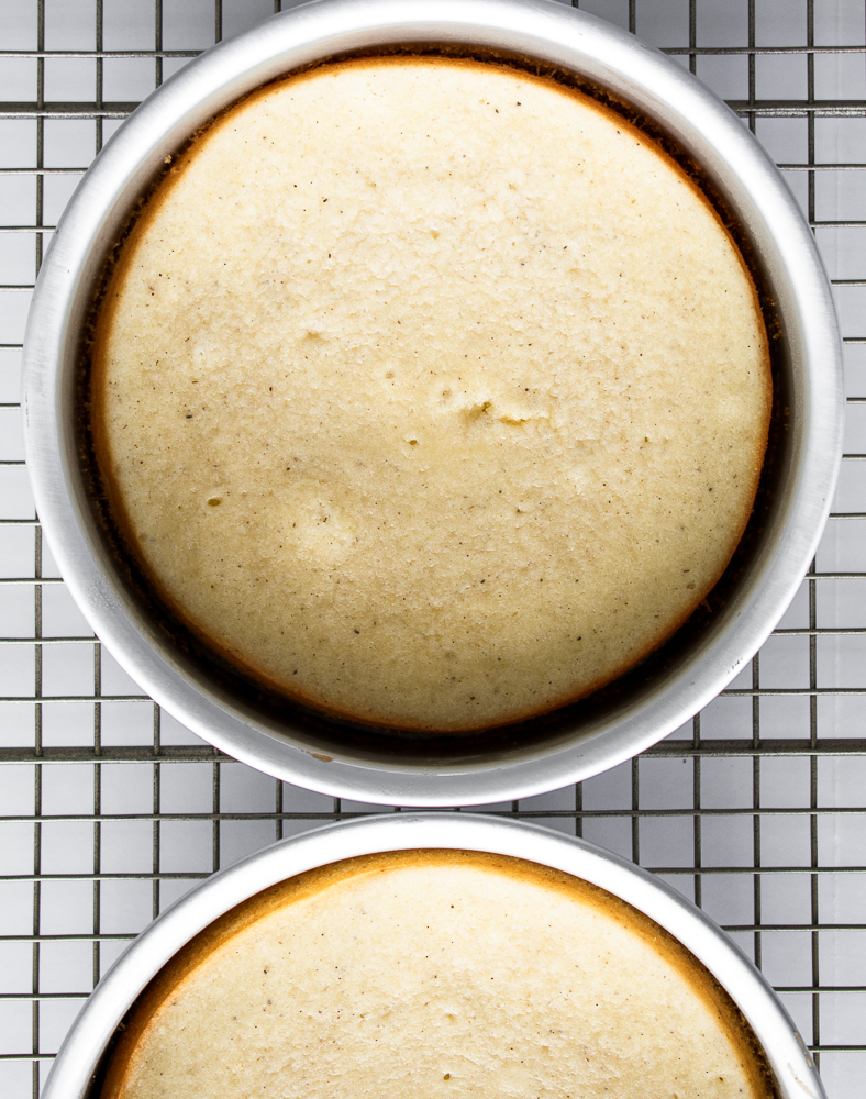 Baked vanilla bean cake layers cooling in their pans on a wire rack