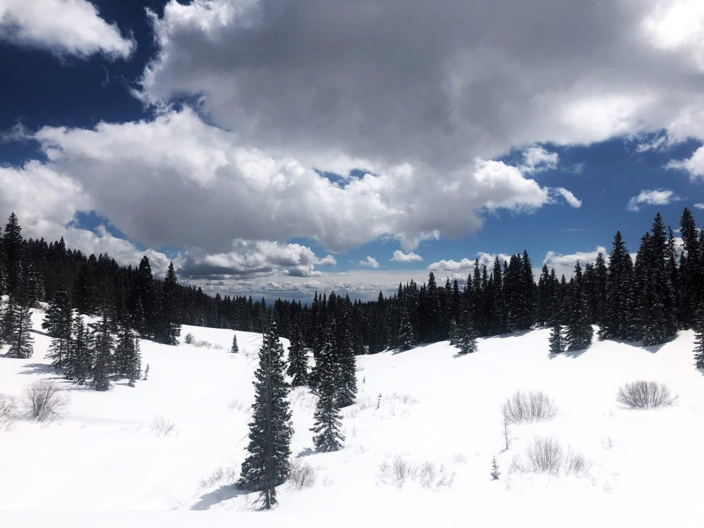 View from snowshoeing trail on Grand Mesa in Colorado