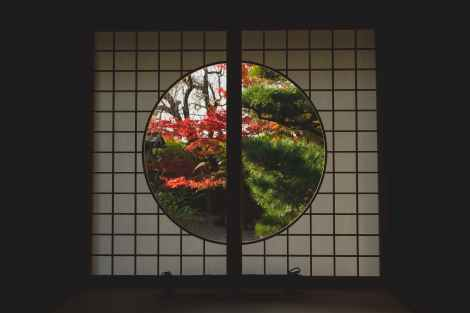 Standing screen with a circular window in a Japanese garden. Through the window you can see trees in autumn. This can represent how boundaries protect and shelter you, while also letting people in when you want. For support on how to set boundaries, please reach out to The Joyful Empath.