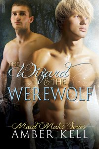 Review: The Wizard and the Werewolf by Amber Kell
