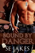 Review: Bound by Danger by S.E. Jakes