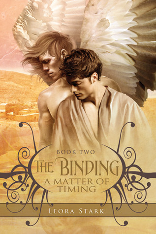 Review: A Matter of Timing by Leora Stark