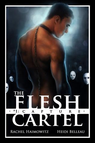 Review: Flesh Cartel, Season One by Rachel Haimowitz and Heidi Belleau