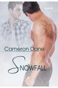 Review: Snowfall by Cameron Dane