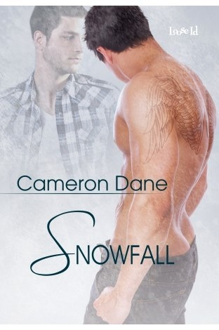 Review: Snowfall by Cameron Dane