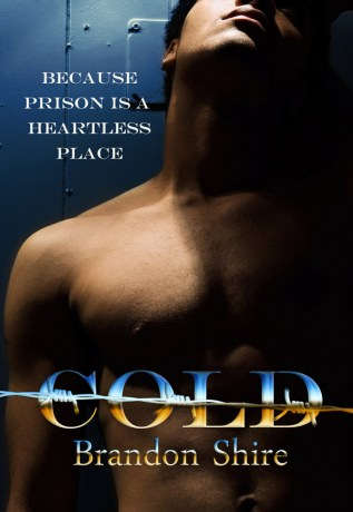 Review: Cold by Brandon Shire