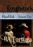 Review: Blind Ride - Season One by B.A. Tortuga