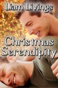 Review: Christmas Serendipity by Liam Livings