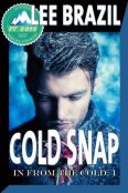Review: Cold Snap by Lee Brazil