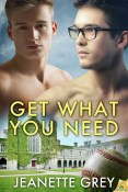 Review: Get What You Need by Jeanette Grey
