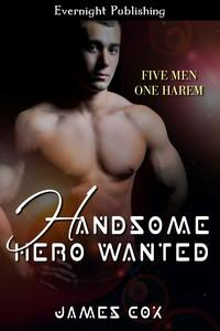 Review: Handsome Hero Wanted by James Cox