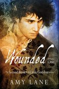 Review: Wounded (Volume One) by Amy Lane