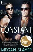 Guest Post and Excerpt: Constant by Megan Slayer