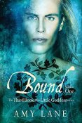 Review: Bound, Volume 1 by Amy Lane