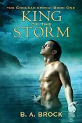 Review: King of the Storm by B.A. Brock