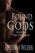 The Chimera (Bound Gods #1) by Adrienne Wilder