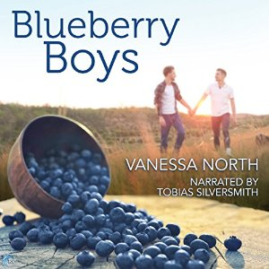 Audiobook Review: Blueberry Boys by Vanessa North