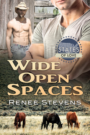 Review: Wide Open Spaces by Renee Stevens