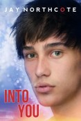 Review: Into You by Jay Northcote