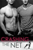 Review: Crashing the Net by Samantha Wayland