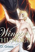 Audiobook Review: On Wings of Thunder by M.D. Grimm