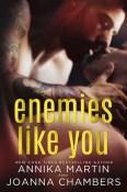 Enemies Like You