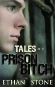 Tales-of-a-Prison-Bitch