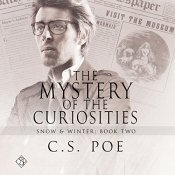 The Mystery of the Curiosities: Snow & Winter Book 2