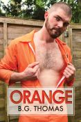 Review: Orange by B.G. Thomas