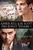 End Street Vol. 1 by Amber Kell and R.J. Scott