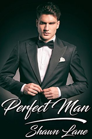 Review: Perfect Man by Shawn Lane
