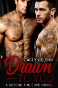 Review: Drawn to You by Jaclyn Quinn