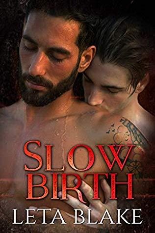Review: Slow Birth by Leta Blake